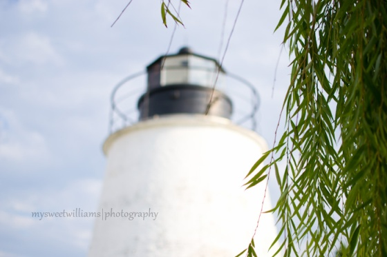 Lighthouse with weeping willow