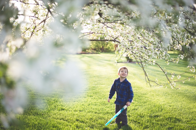 crab apple tree and dandelions-4878-2